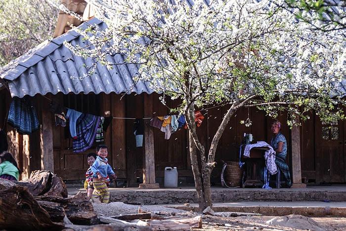 Những lưu ý khi đi du lịch Hà Giang