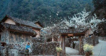 Đi phượt Hà Giang mùa nào đẹp nhất?