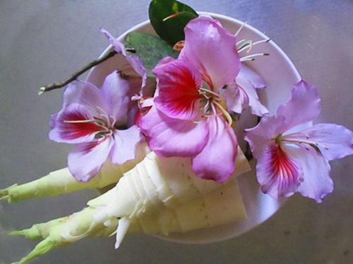 Măng nộm hoa ban Lai Châu
