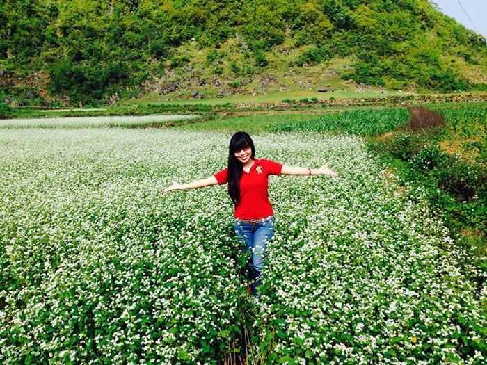 Mùa hoa tam giác mạch ở Cao Bằng