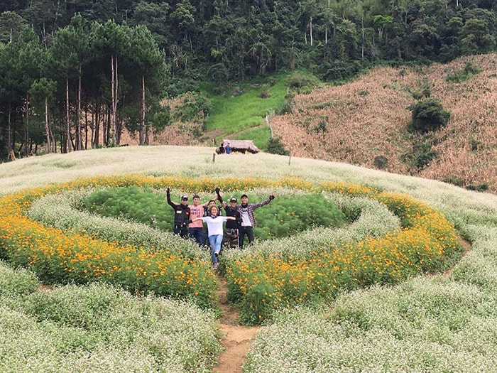 Mùa hoa tam giác mạch tuyệt đẹp ở Mộc Châu