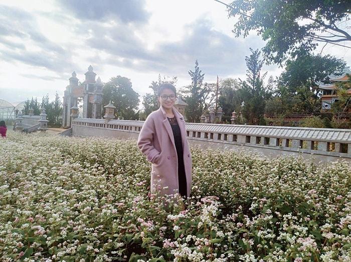 Cánh đồng hoa tam giác mạch ở gần chùa Vạn Đức