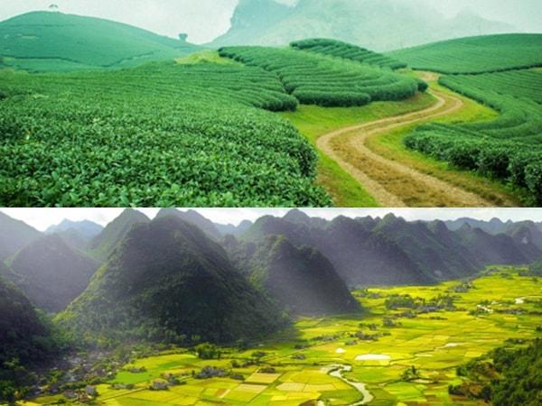 6 cánh đồng khiến bạn thêm yêu miền Bắc 1