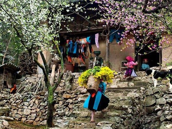 Chùm ảnh: Cao nguyên đá Đồng Văn những ngày Giáp Tết 1