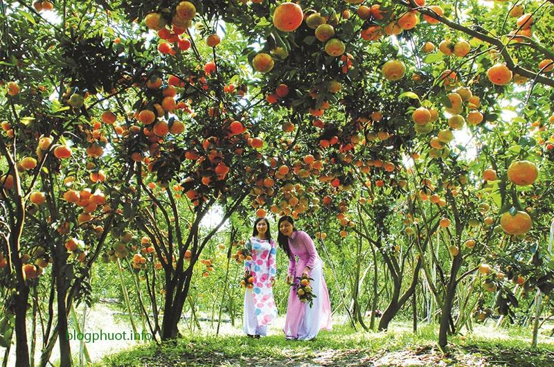 Miệt vườn Long Khánh là vùng đất trái cây nổi tiếng ở Đồng Nai