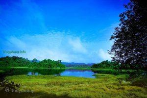 Rừng Quốc Gia Nam Cát Tiên