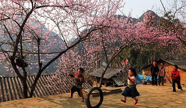 8 điểm du xuân đẹp nhất Việt Nam hút khách dịp đầu năm