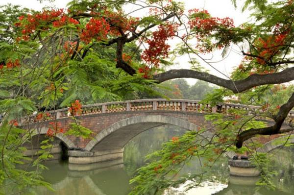 Về Sơn Tây khám phá vẻ đẹp Thành cổ 200 năm