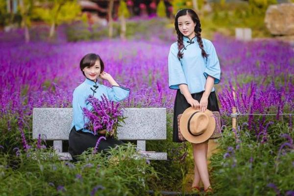 Sắc tím mộng mơ của hoa oải hương tôn nên vẻ kiêu sa của người con gái