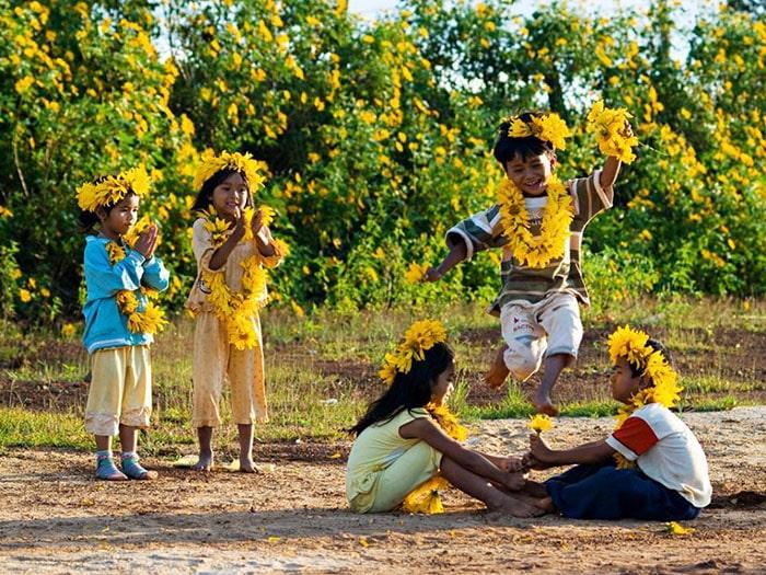 Tháng 11 đi phượt Mộc Châu ngắm hoa dã quỳ