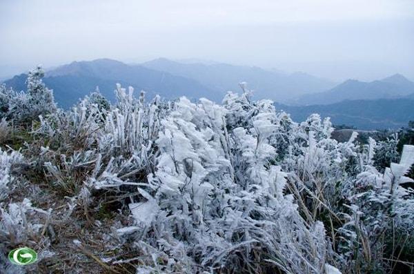 Đỉnh Mẫu Sơn những năm trở lại đây thường có băng tuyết