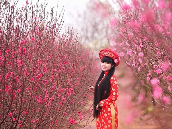 Các địa điểm chụp ảnh Tết ở Hà Nội đẹp lung linh