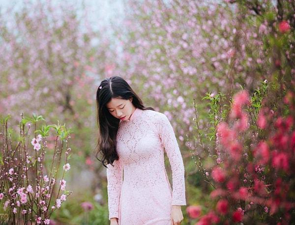 """Vườn đào Nhật Tân – Địa điểm chụp ảnh Tết ở Hà Nội """"hot"""" nhất"""
