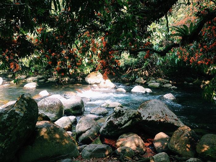 Phong cảnh thiên nhiên tuyệt đẹp ở suối Moọc