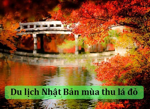 Mùa thu (Từ tháng 10-11) – trời trong lành và lá đỏ Momiji