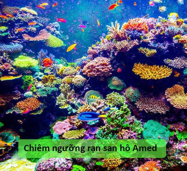 Bãi biển Amed, Bali, Indonesia