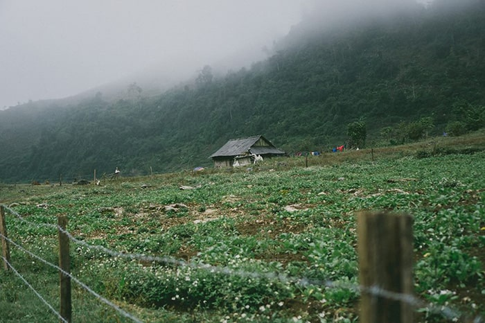 Bản Thung Cuông - Mộc Châu