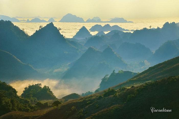 Biển mây trên đồi chè Mộc Sương