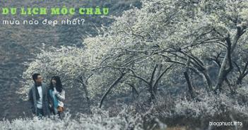 Du lịch Mộc Châu mùa nào đẹp nhất?
