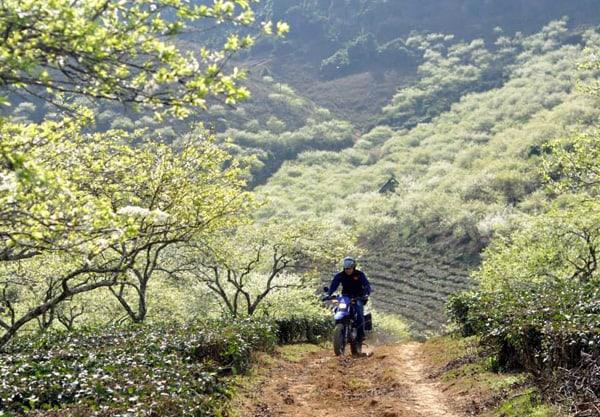 Đi du lịch Mộc Châu bằng xe máy