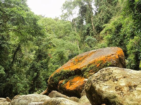Địa hinh khu bảo tồn Chế Tạo