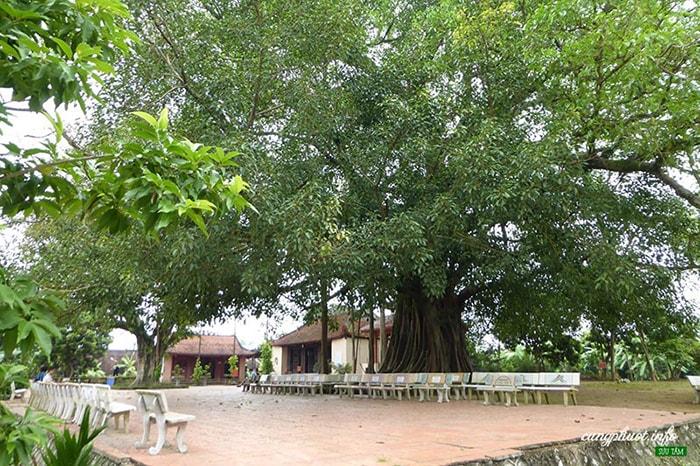 Đền thờ Hoàng Công Chất, Điện Biên