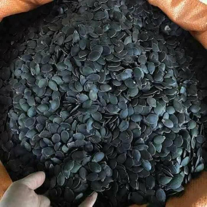 hạt bí mèo đen là đặc sản của người Mèo ở Hà Giang