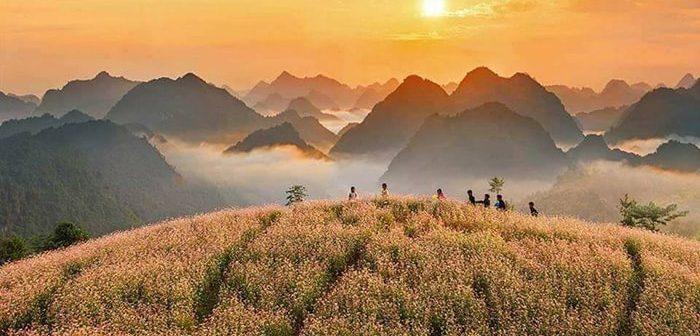 Kinh nghiệm phượt Hà Giang mùa tam giác mạch