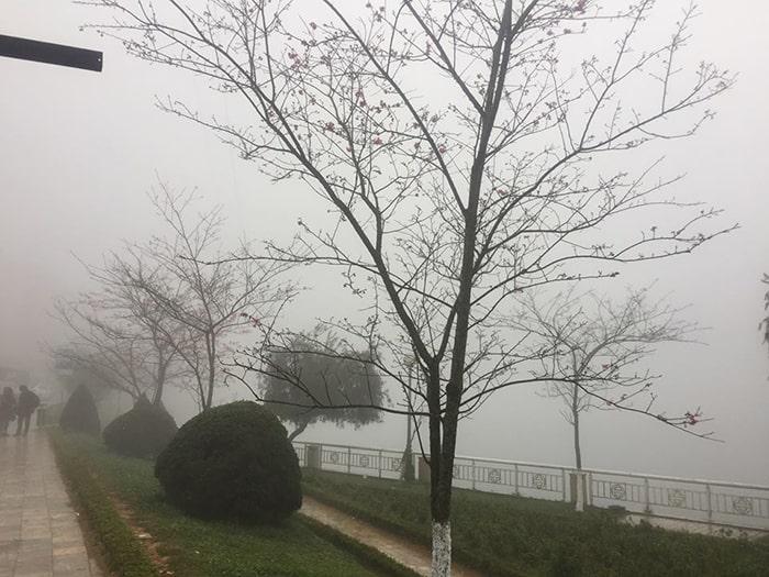 Sapa tháng 3 ngập tràn trong sương mờ