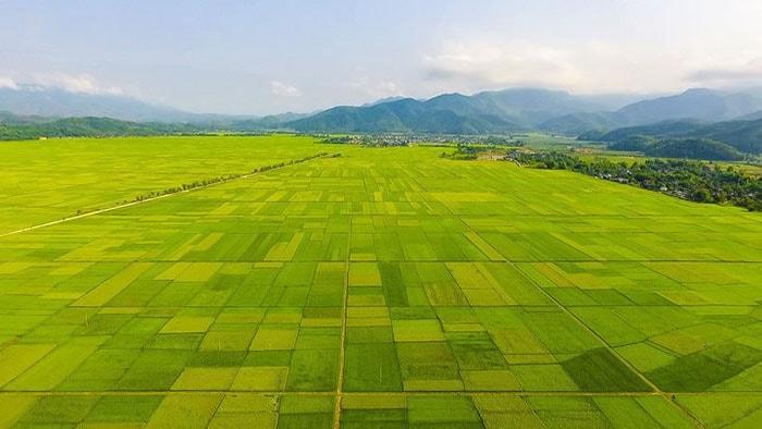 Mường Thanh - Cánh đồng rộng lớn nhất vùng Tây bắc