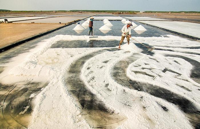 Cánh đồng muối trên cung đường Phan Rang - Nha Trang