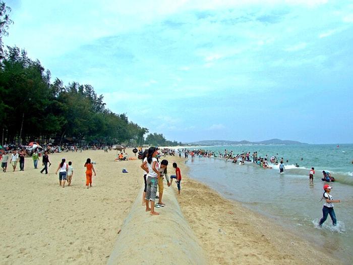 Bãi biển Đồi Dương với hàng dương xanh mướt