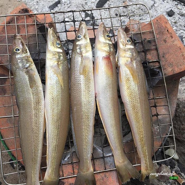 Đặc sản cá đục nướng ở LaGi