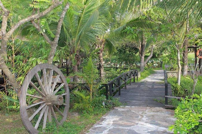 Đường đi rợp bóng cây xanh ở Coco Homestay