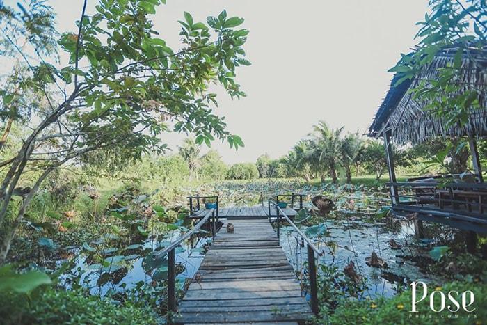 1 chiếc ao sen nhỏ trong khu Coco homestay LaGi