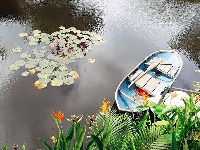 Bạn có thể chèo thuyền dạo chơi trên hồ nước ở LaGi Farmstay