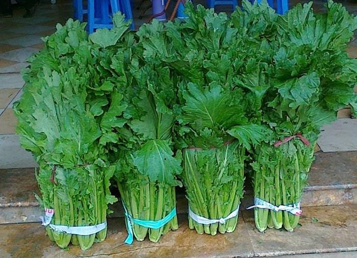Rau cải xào nổi tiếng ở Mộc Châu