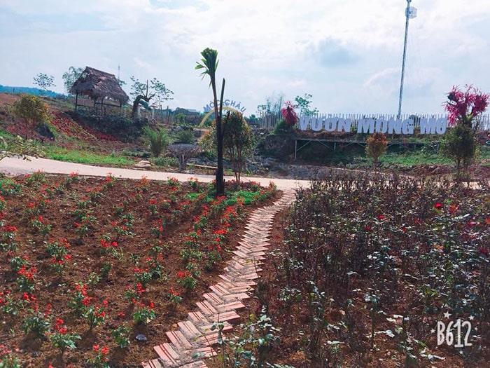 Vườn Mộng Mơ là địa điểm chụp ảnh siêu mới ở Mộc Châu