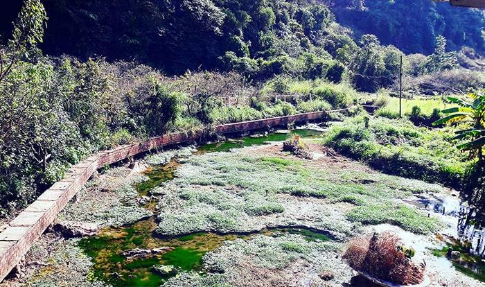 Dòng suối nhỏ phủ đầy rêu ở bản Ba Phách