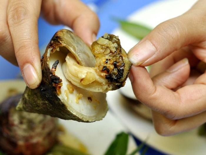 Các loại ốc đặc sản ở biển Cam Bình