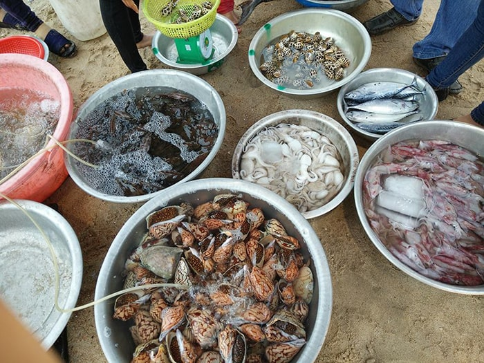 Các loại hải sản ở bãi biển Cam Bình