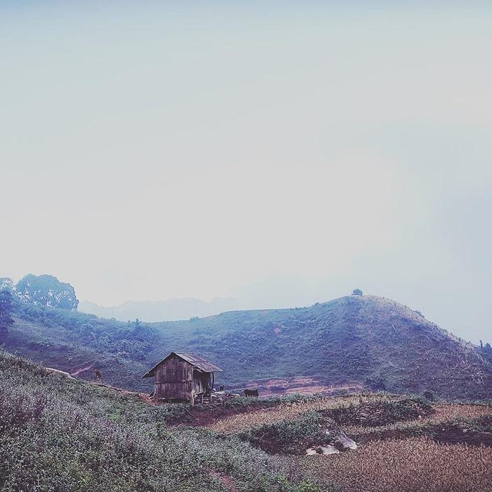 Ruộng lúa của những bản làng trên đường trekking Pha Luông