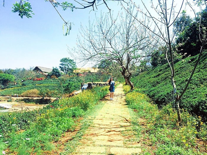 Đường vào khu du lịch Ko Tam - Buôn Mê Thuột