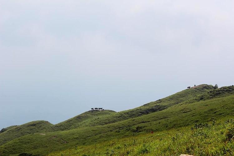 Núi Phặt Chỉ di tích đẹp tại Mẫu Sơn